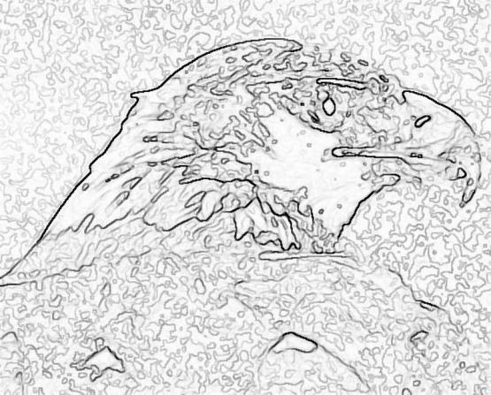 ptic_86