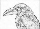 ptic_100