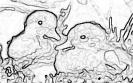 ptic_70